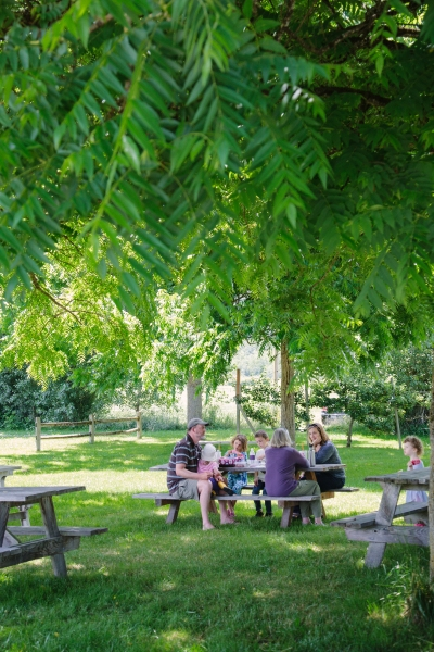 Picnic under the walnut trees on pick-up day (photo by Libby Lewis Photography)
