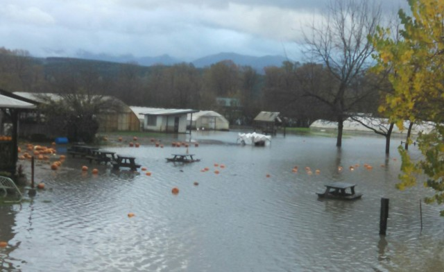 Pumpkins & picnic benches floating in the parking lot during our Halloween flood